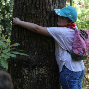 Tree hugger MTOS Forest Ecology Hike