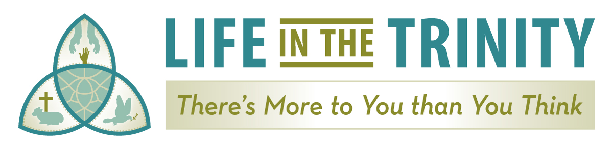 2017 Renewal Conference: Life in the Trinity (There's More to You than You Think)
